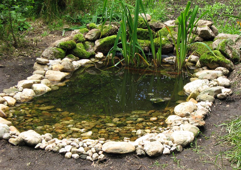 El estanque terminado