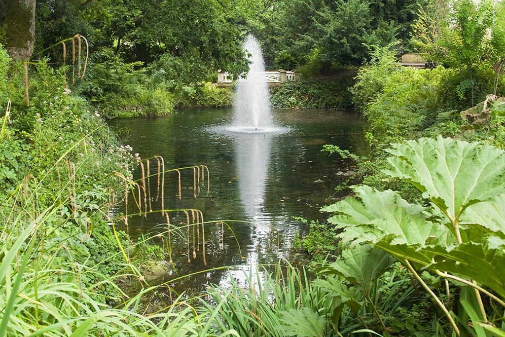 Estanque de estilo natural con una fuente en el centro